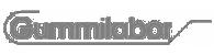 Поставщик транспортёрных и конвейерных лент Gummilabor